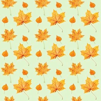 Seamless pattern da fatto di foglie secche di autunno su verde chiaro