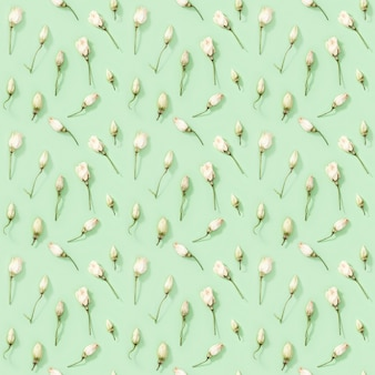 Seamless pattern da fiori secchi naturali su morbido disegno floreale verde