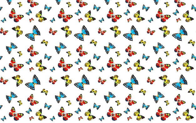 Seamless su sfondo bianco con farfalle