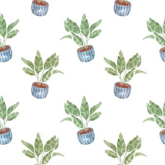 Seamless pattern acquerello con piante d'appartamento-banana fatta in casa su sfondo bianco, illustrazione dell'acquerello per la casa