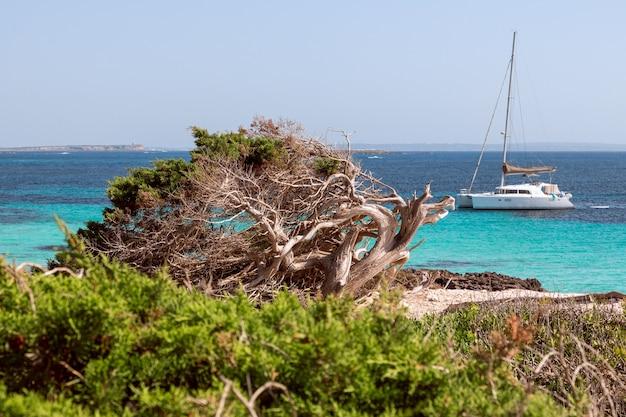 Seascape al largo della costa con catamarano a ibiza, spagna