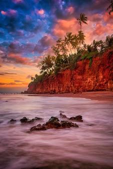 Seascape con scogliera di palme al tramonto