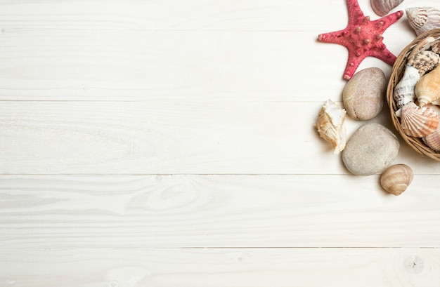 Conchiglie e stelle marine adagiate su tavole di legno bianche
