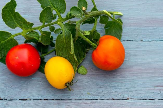 Raccolto stagionale di pomodori su un tavolo di legno blu, stile rustico, posto per il tuo testo