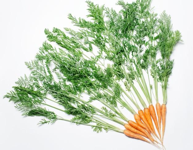 Condimento carote isolate su sfondo bianco, vista dall'alto.
