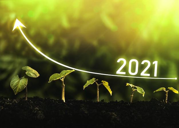 Le piantine crescono dal suolo con il grafico a freccia digitale per l'anno 2021.