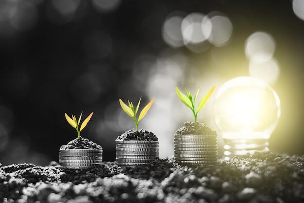 Le piantine stanno crescendo su molte monete e c'è una lampadina nelle vicinanze, che usa la creatività per fare soldi.