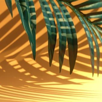 Messa a fuoco selettiva della foglia di cocco esotica con ombra sull'arancio