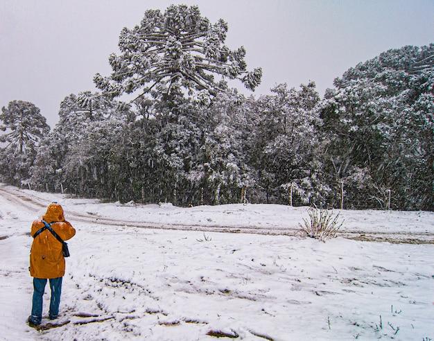Serra de santa catarina, regione meridionale del brasile, uno dei più grandi fenomeni di neve mai visti in tutta la sua storia.