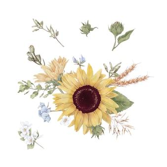Set di simpatici girasoli fiori rami e foglie. illustrazione ad acquerello