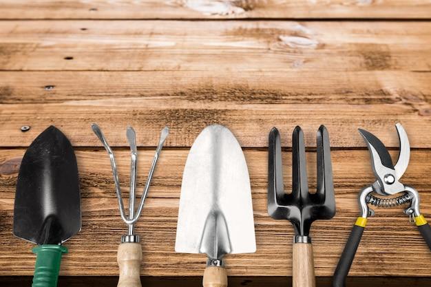 Set di utensili per la cura delle piante sullo sfondo
