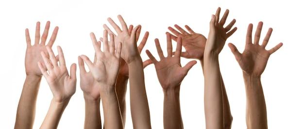 Set di mani alzate, isolate