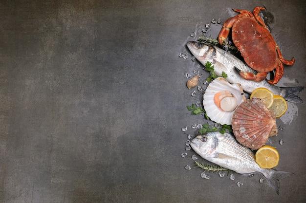 Diversi pesci, granchi e conchiglie su uno sfondo nero