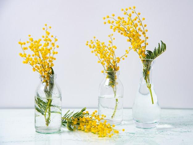 Diverse bottiglie di vetro con fiori di mimosa gialla stanno su uno sfondo di vetro bagnato.