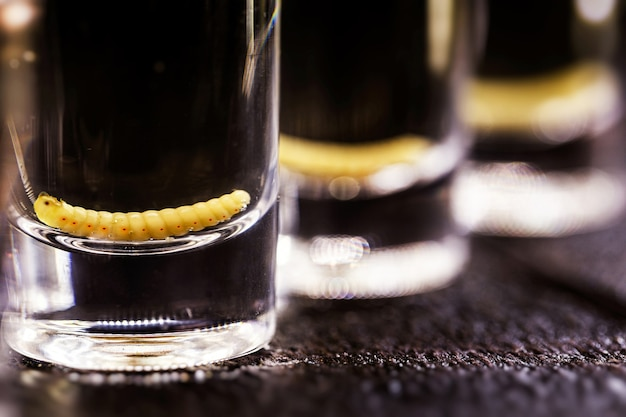 Diversi bicchieri di mezcal (o mezcal), bevanda tipica ed esotica del messico, con larva in superficie, superficie nera, spazio per il testo