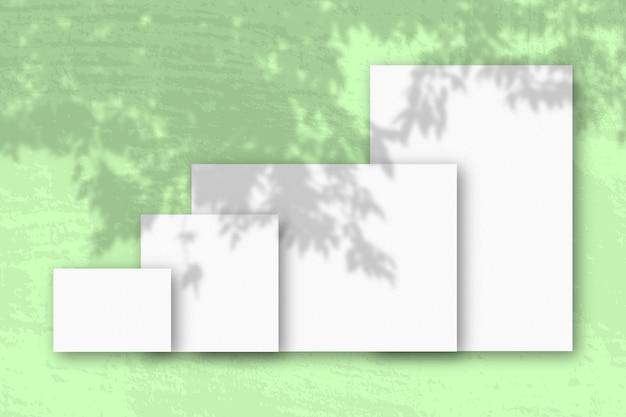 Diversi fogli orizzontali e verticali di carta ruvida bianca su uno sfondo di muro verde mockup con una sovrapposizione di ombre vegetali la luce naturale proietta le ombre da un ramo di apple