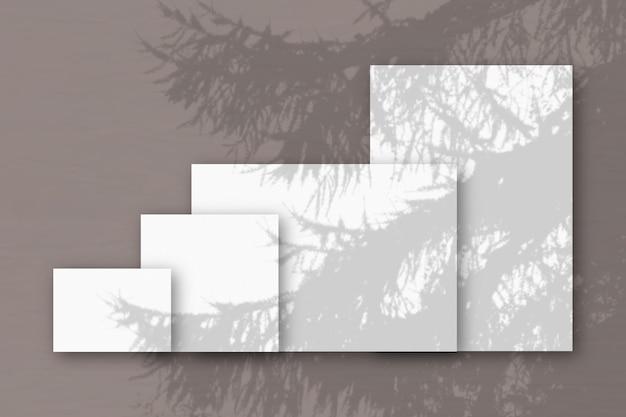 Diversi fogli orizzontali e verticali di carta ruvida bianca su uno sfondo di muro rosa mockup con una sovrapposizione di ombre vegetali la luce naturale proietta le ombre da un ramo di abete rosso