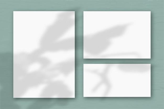 Diversi fogli orizzontali e verticali di carta ruvida bianca sullo sfondo di un muro grigio. la luce naturale proietta ombre da uno zygocactus. disposizione piana, vista dall'alto. orientamento orizzontale