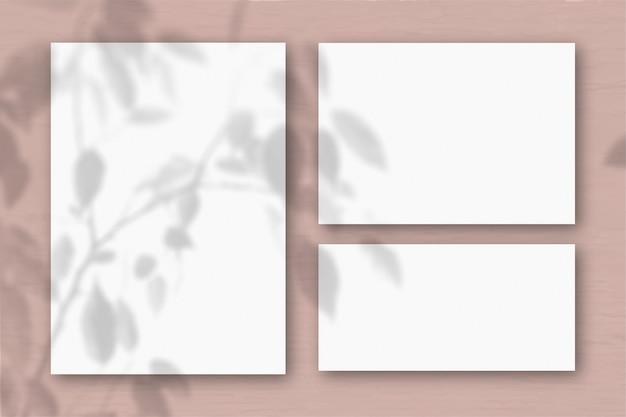 Diversi fogli orizzontali e verticali di carta ruvida bianca sullo sfondo di un muro rosa. la luce naturale proietta le ombre di una pianta esotica. disposizione piana, vista dall'alto. orientamento orizzontale