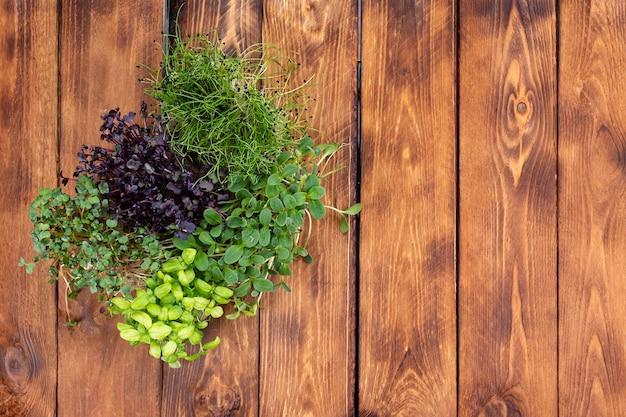 Diversi tipi di microgreens su fondo in legno. microgreens di diverse varietà su uno sfondo di legno.