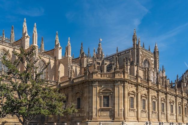 Cattedrale di siviglia, catedral de santa maria de la sede, architettura in stile gotico in andalusia, spagna