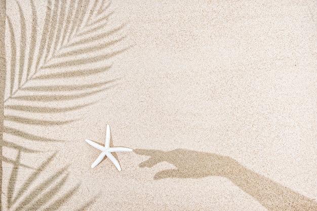 Ombra di mano femminile e foglie di palma, stelle marine sulla sabbia