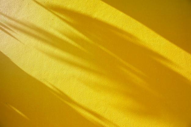 Foglie di ombra sulla parete gialla