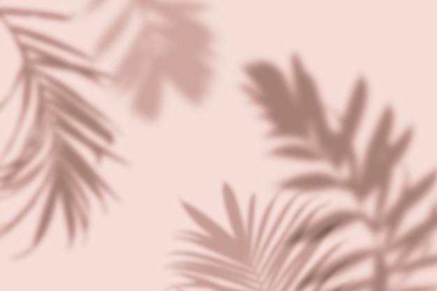 Ombra di foglie di palma tropicali su sfondo rosa pastello concetto estivo di natura minima