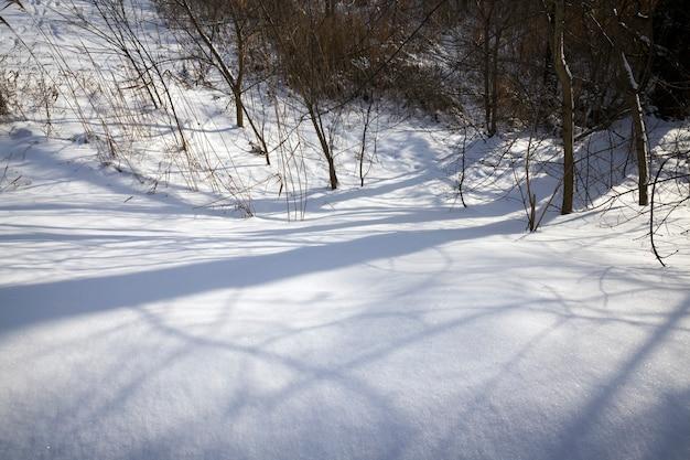 Le ombre degli alberi cadono sui grandi cumuli di neve profonda