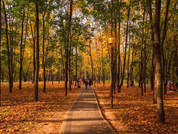 Un vicolo ombreggiato in un parco autunnale con persone che camminano sotto le lanterne incandescenti. mosca.