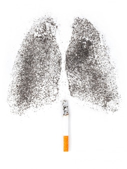 Forma di polmoni con polvere di carbone.