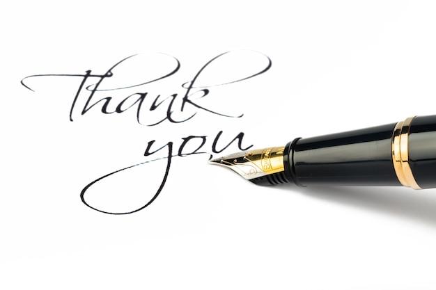Penna stilografica sheaffer e scritta