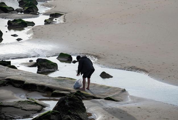 Crostacei approfittando della bassa marea