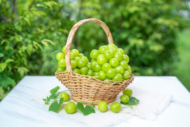 Shine moscato uva con foglie sfocate.