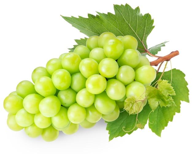 Shine moscato uva con foglie isolato su uno spazio bianco.