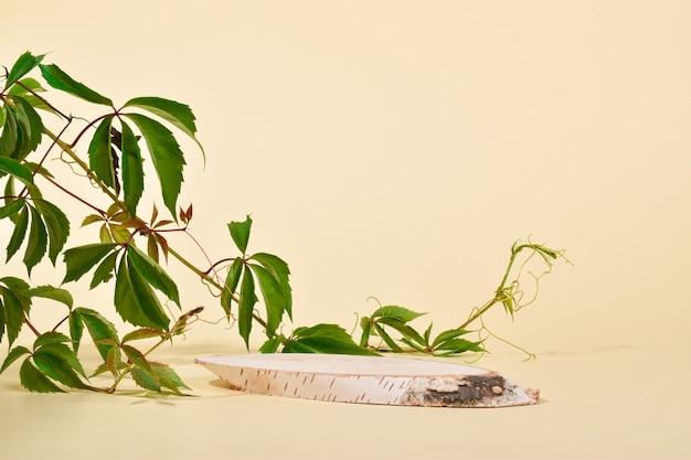Una vetrina in legno di betulla naturale ed edera. il podio per la presentazione di merci e cosmetici è realizzato in legno su fondo beige. scena del marchio minimalista.