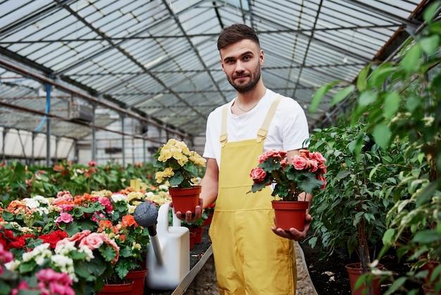 Visualizzazione dei risultati del lavoro. l'agricoltore maschio tiene due vasi con fiori nella serra piena di piante.
