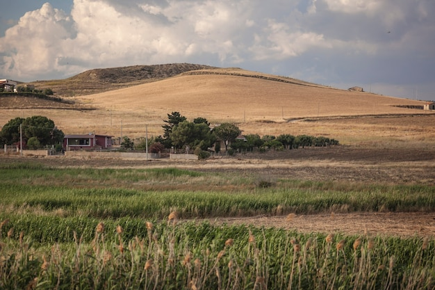 Entroterra siciliano in un paesaggio collinare nel periodo estivo