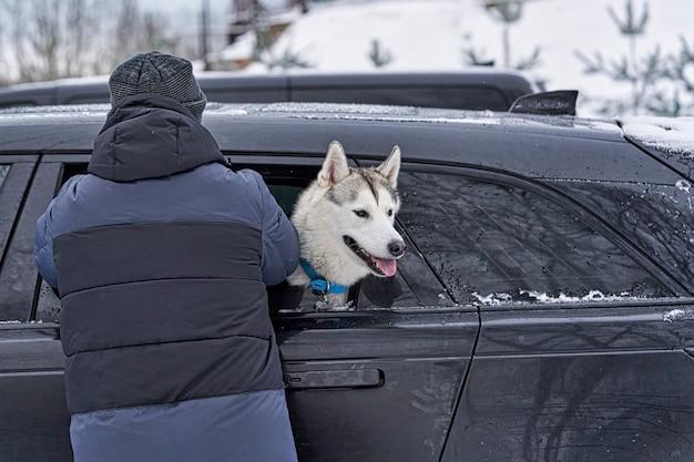 Il cane malato ha messo il muso fuori dal finestrino di una macchina