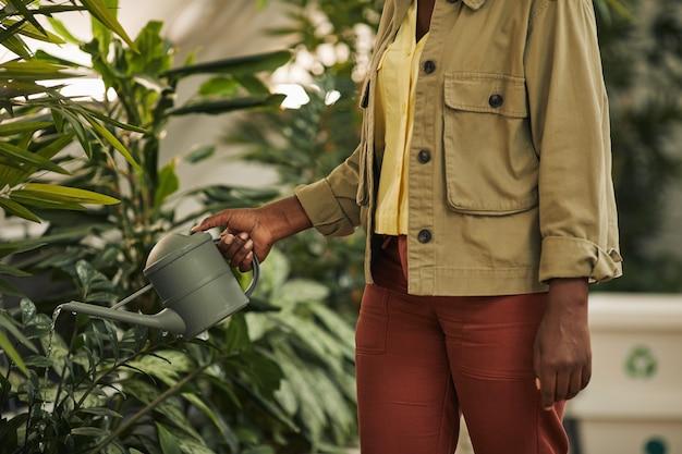 Vista laterale ritagliata ritratto di contemporanea donna afro-americana innaffiare le piante in ufficio, copia dello spazio