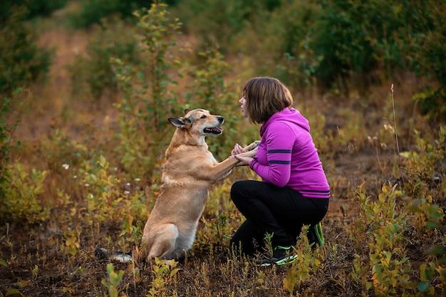Vista laterale della donna in felpa con cappuccio brillante che addestra un cane obbediente mentre trascorre del tempo in un campo verde