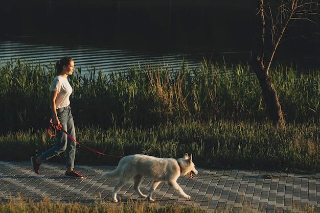 Vista laterale della donna in abiti estivi leggeri che cammina al guinzaglio cane bianco di sera con erba e acqua nelle vicinanze