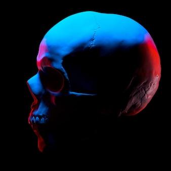 Vista laterale del modello in gesso del cranio umano isolato su sfondo nero con tracciato di ritaglio. concetto di terrore, apprendimento fisiologico e disegno.
