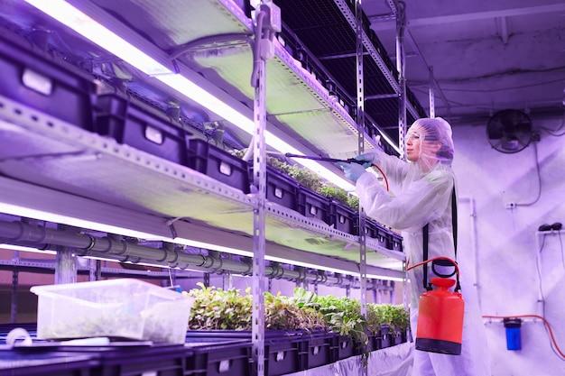 Ritratto di vista laterale dell'ingegnere agricolo femminile che spruzza fertilizzante mentre lavora nella serra del vivaio della pianta illuminata dalla luce blu, spazio della copia