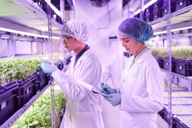 Ritratto di vista laterale di due giovani lavoratori che prendono appunti durante l'esame di piante in serra vivaio, copia dello spazio