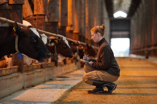 Ritratto di vista laterale di giovane donna che ispeziona il bestiame e scrive negli appunti mentre lavora alla fattoria degli animali, lo spazio della copia