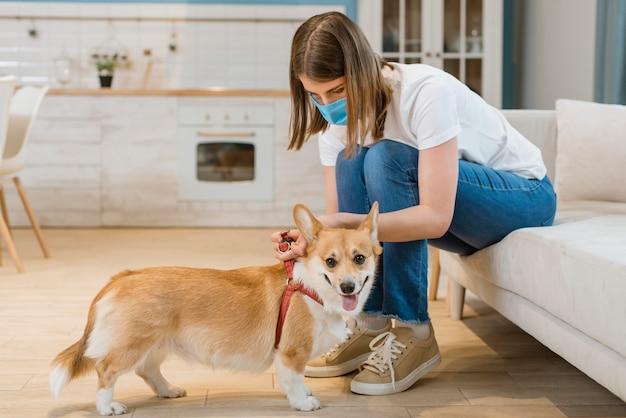 Vista laterale della donna con la mascherina medica che mette imbracatura sul cane