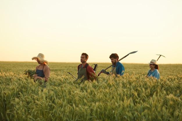 Vista laterale ai lavoratori che tengono gli strumenti mentre camminano attraverso il campo dorato nella luce del tramonto, copia dello spazio sopra
