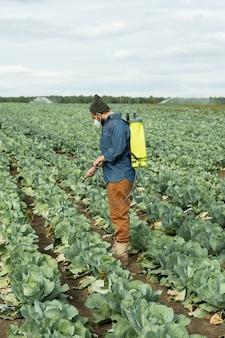 Vista laterale del giovane agricoltore che spruzza pesticidi sui cavoli