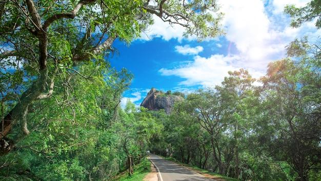 Fortezza di sigiriya lion rock in sri lanka Foto Premium